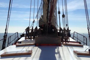 Deck_Westenwind_001-495x400